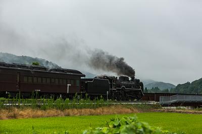 3B5A4652.jpg