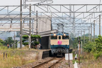 B92A7933.jpg